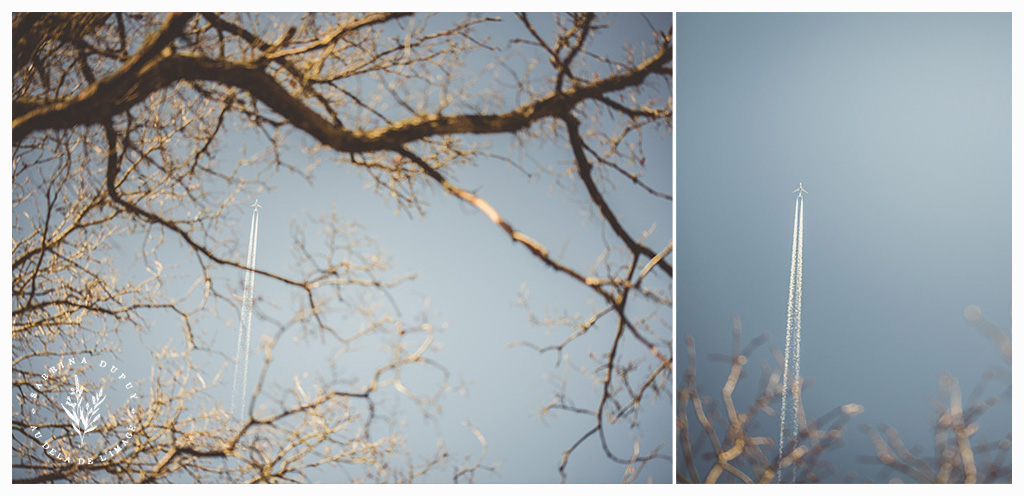 Diptych 3