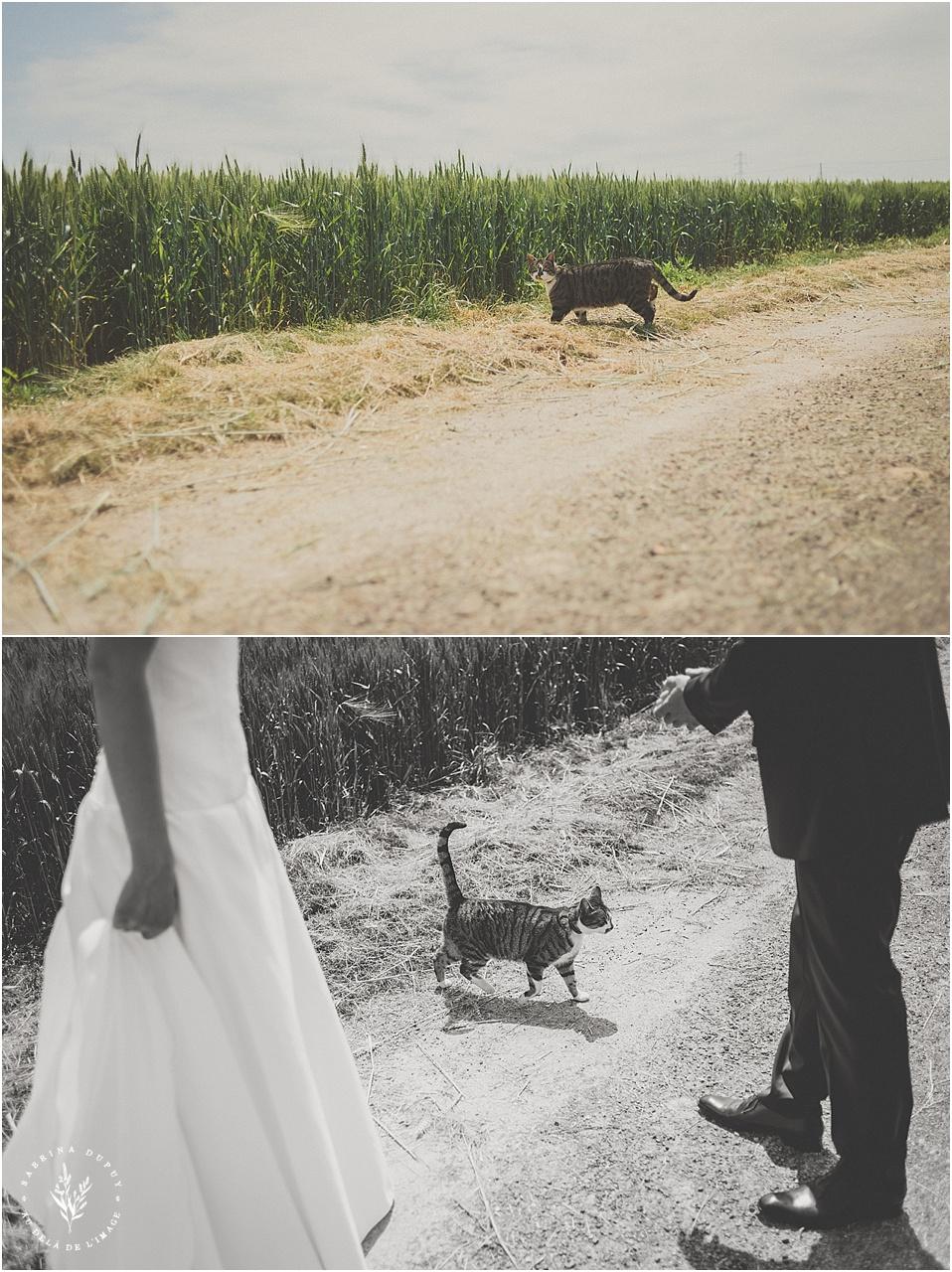 mariage-bourgogne-yonne_0035