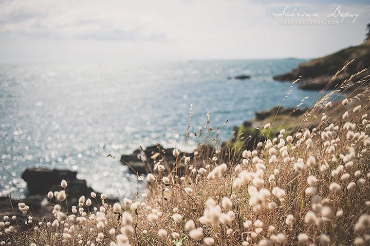 Escale Bretonne | Paysages du Morbihan